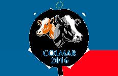6 vaches du 22 préselectionnées pour l'Européen de Colmar