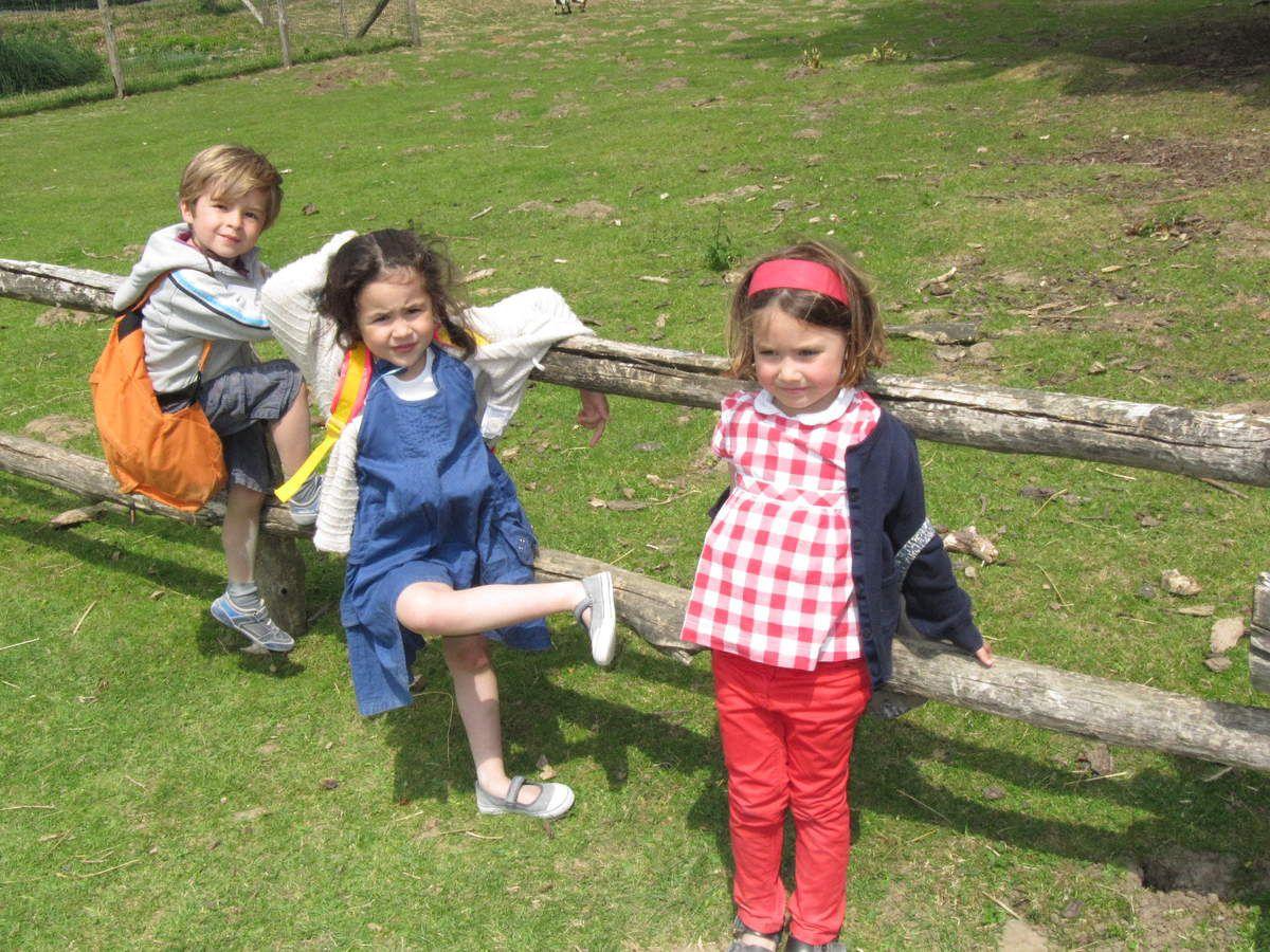 Les maternelles au Parc des félins