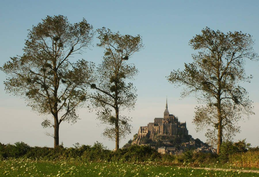 Le Mont-saint-Michel  -  © Monique Prieur-Bertrand