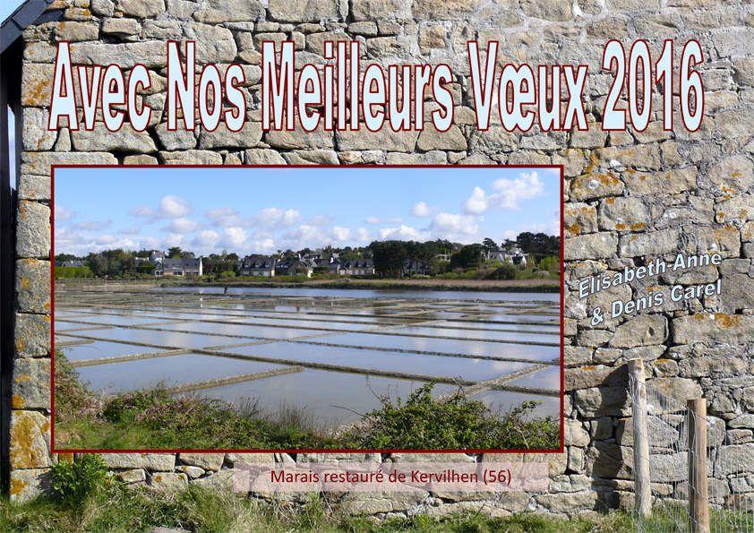 © Denis Carel -   Marais de Kervilhen, proche de Carnac dans le Morbihan, site péri-urbain qui a été sauvé in-extremis par des amoureux de la nature, et que nous avons visité il y a  quelques années.