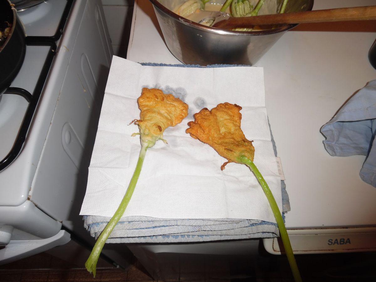 beignets aux fleurs de courges