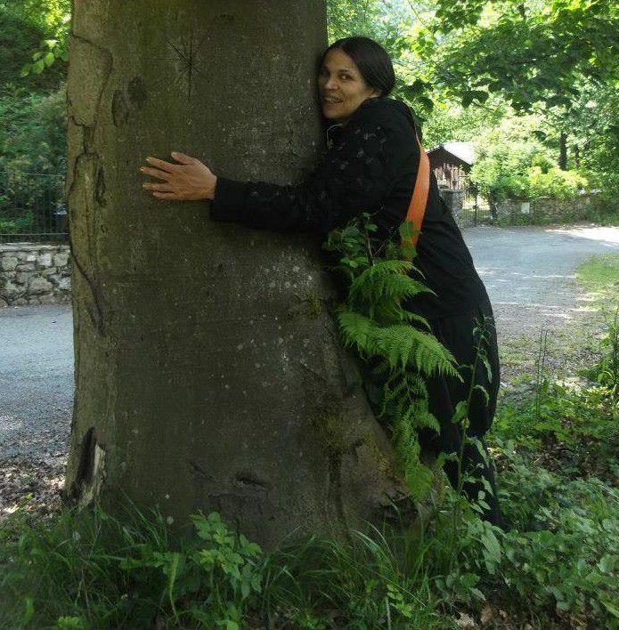 S'initier à l'énergie des arbres