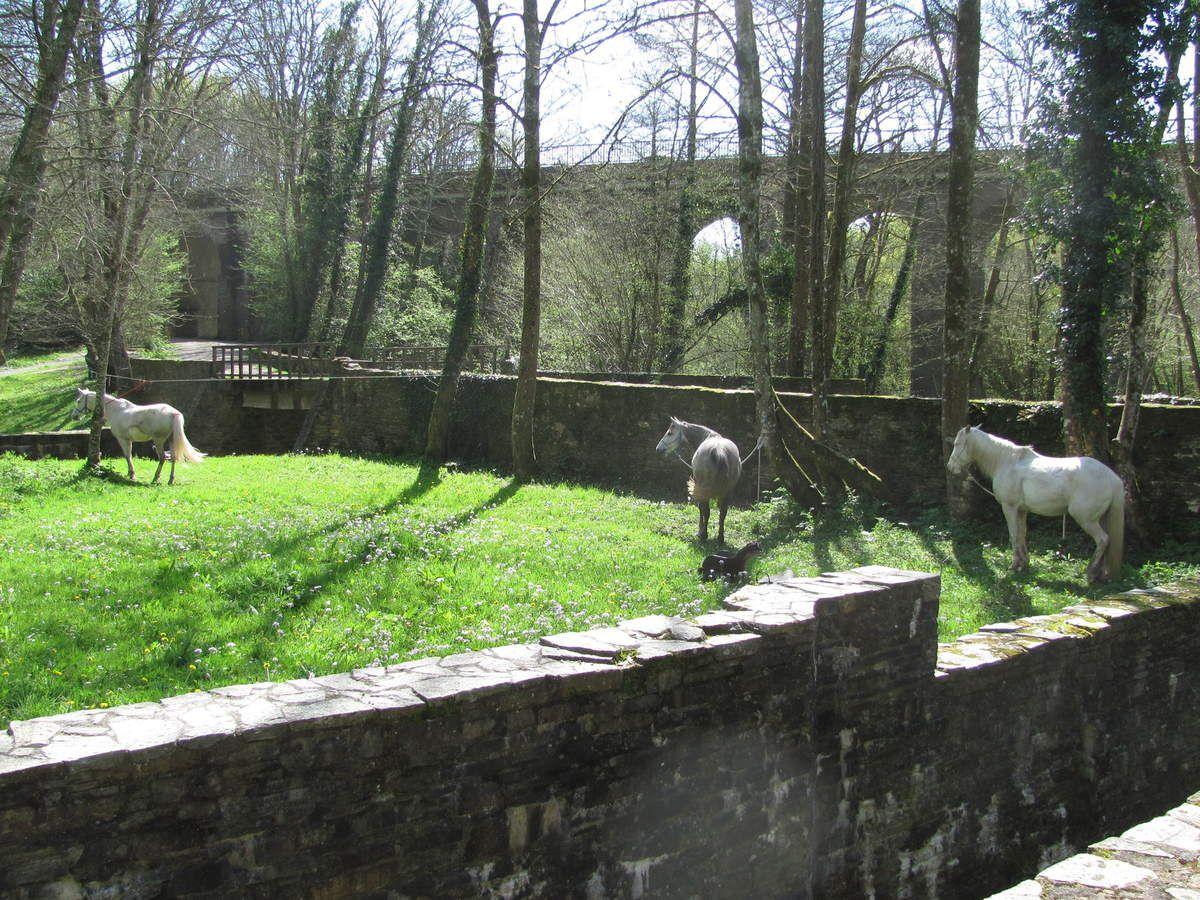 Album - 2015-04-12 La Chapelle sur Erdre