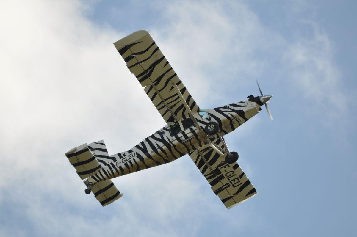 Le Pilatus PC-6...