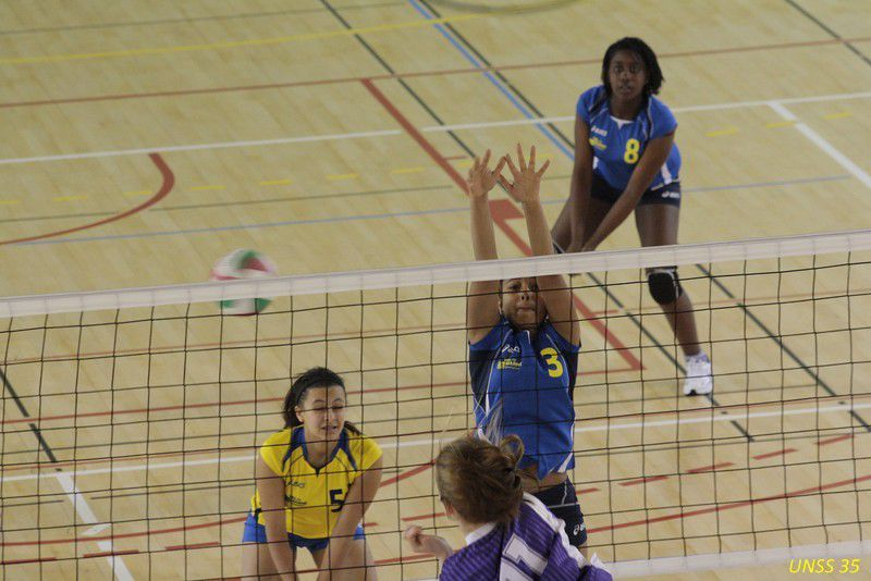 AS Volley semaine du 2 au 6 novembre