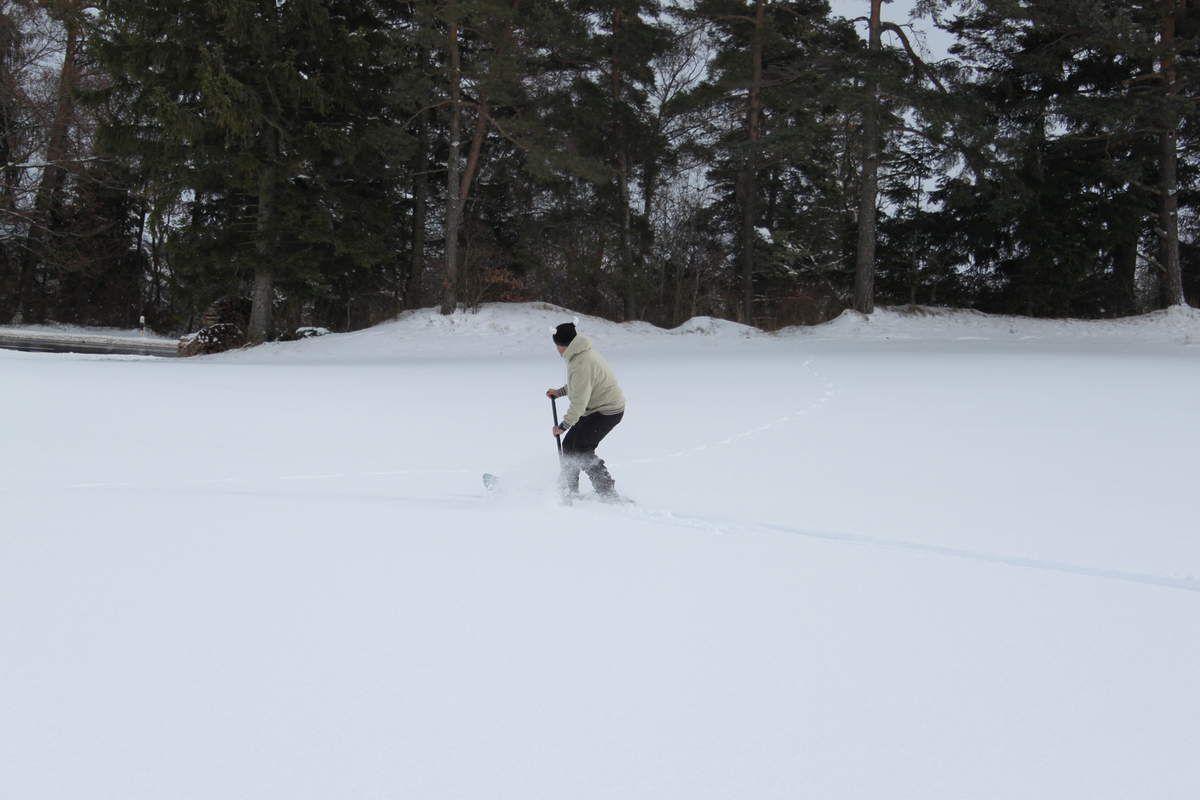 Sortie Ice Paddle le matin et Snow Paddle l'âpre-midi