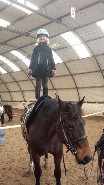 Stage d'équitation à Linselles
