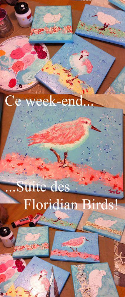 suite des Floridian Birds...