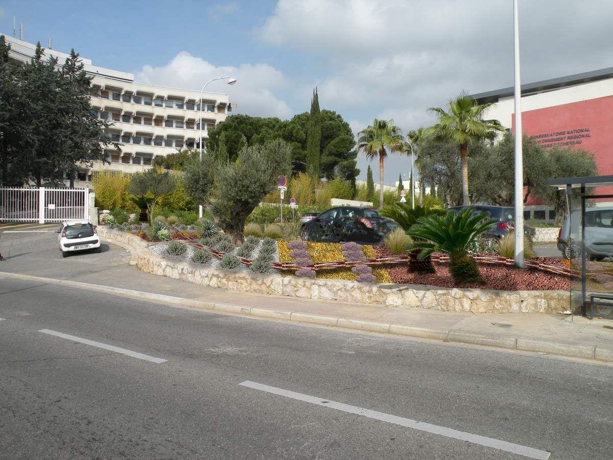 Jardin Adeline Bailet - Aménagement d'un massif en xérophytes