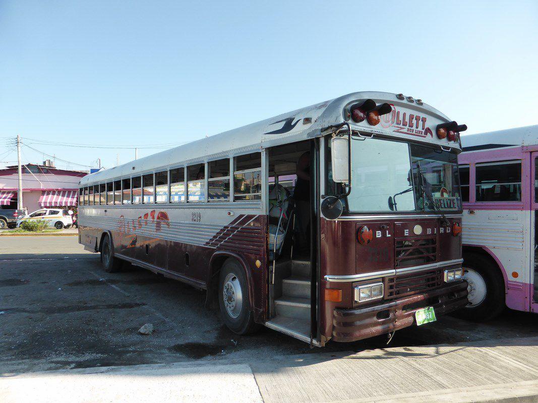On troque la Logan contre un ancien school-bus.