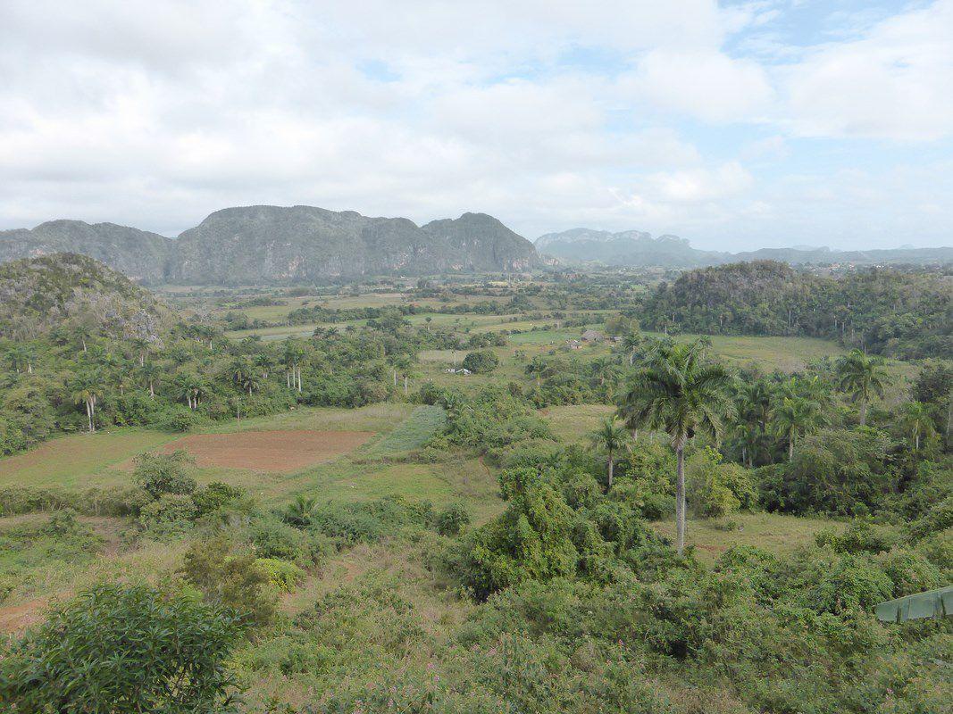 Vignales et sa vallée