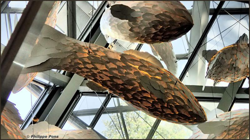 Fondation Louis Vuitton -  Frank GEHRY /  Fish lamps
