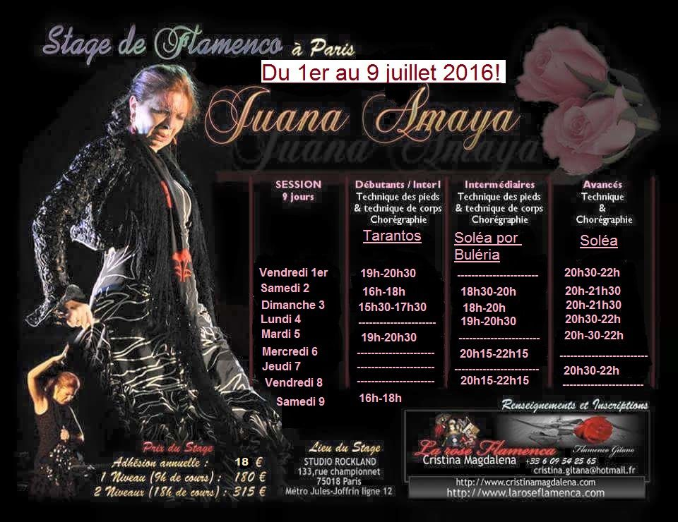 Stage de flamenco à Paris avec Juana Amaya-Cours de flamenco à Paris La Rose Flamenca!