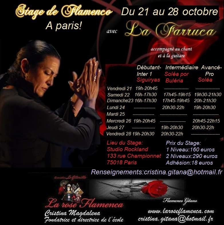 Stage de flamenco avec La Farruca du 22 au 28 octobre 2016! Cours de flamenco à Paris!