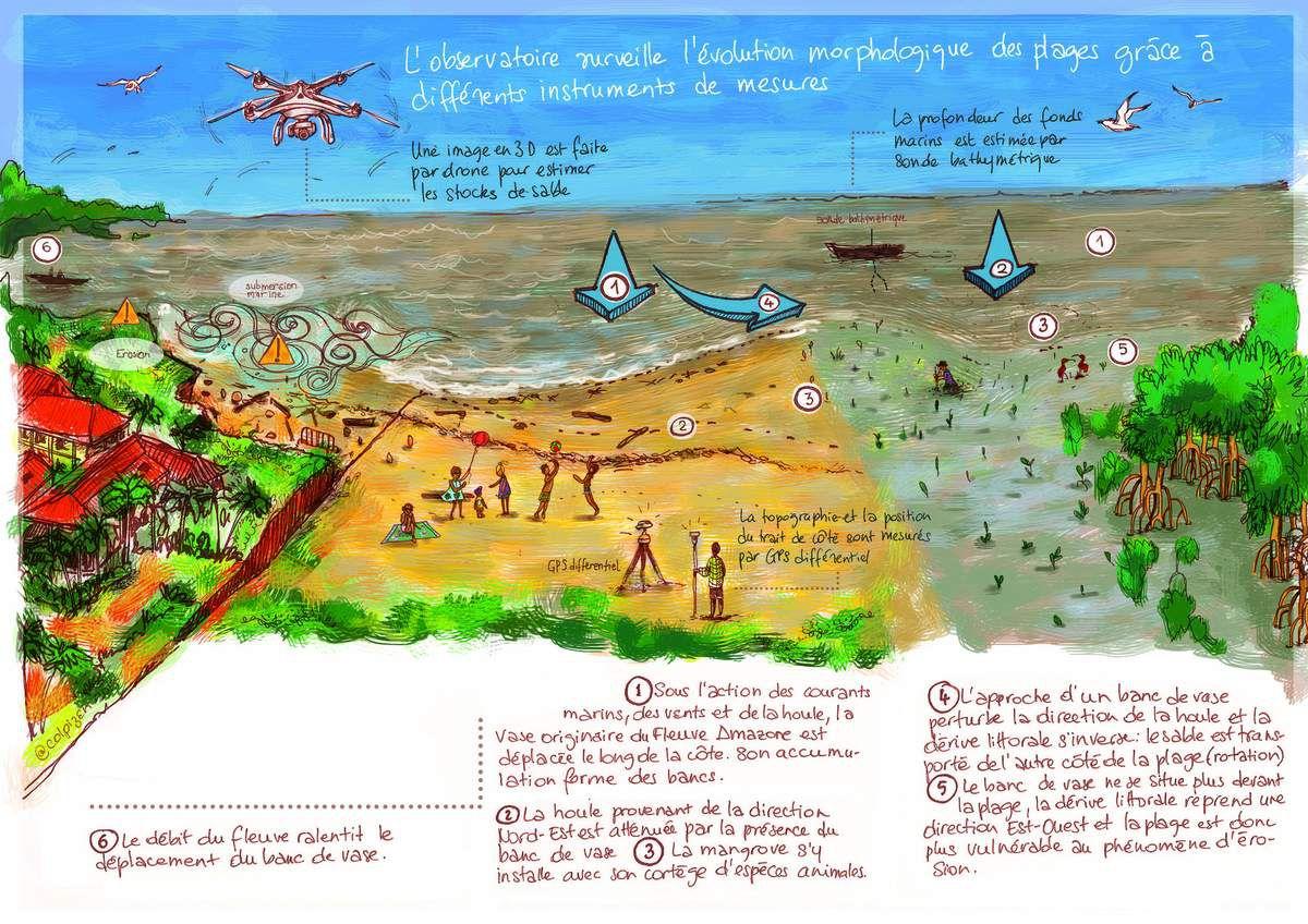 Comensciences Guyane #illustration #sciences