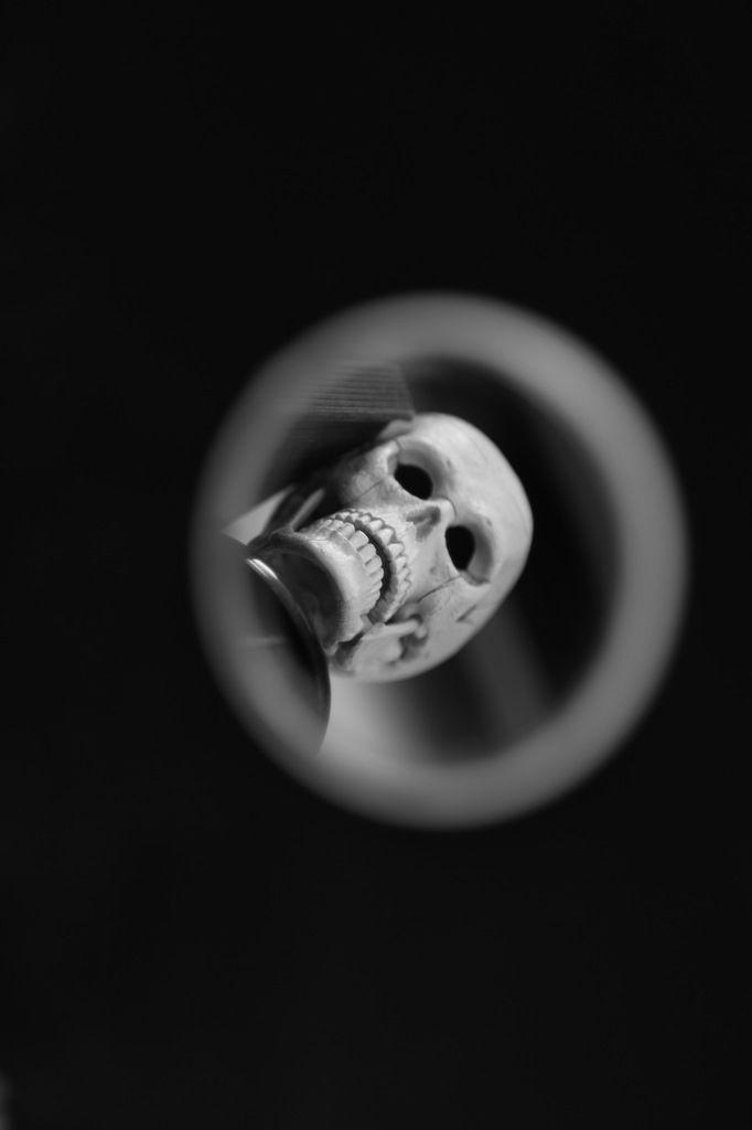 Crâne-rit. VB. 2016.