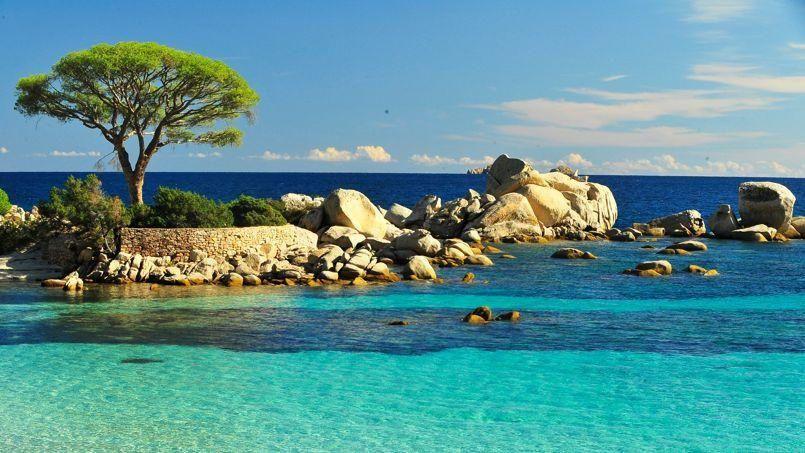 Même si tout notre temps est consacré à notre déménagement, on est bien content de se prendre une pause de 2 semaines sur notre deuxième île préférée: la Corse!!!  Départ prévu dans 3 jours pour Savone où nous prendrons le ferry! Direction Bastia!!