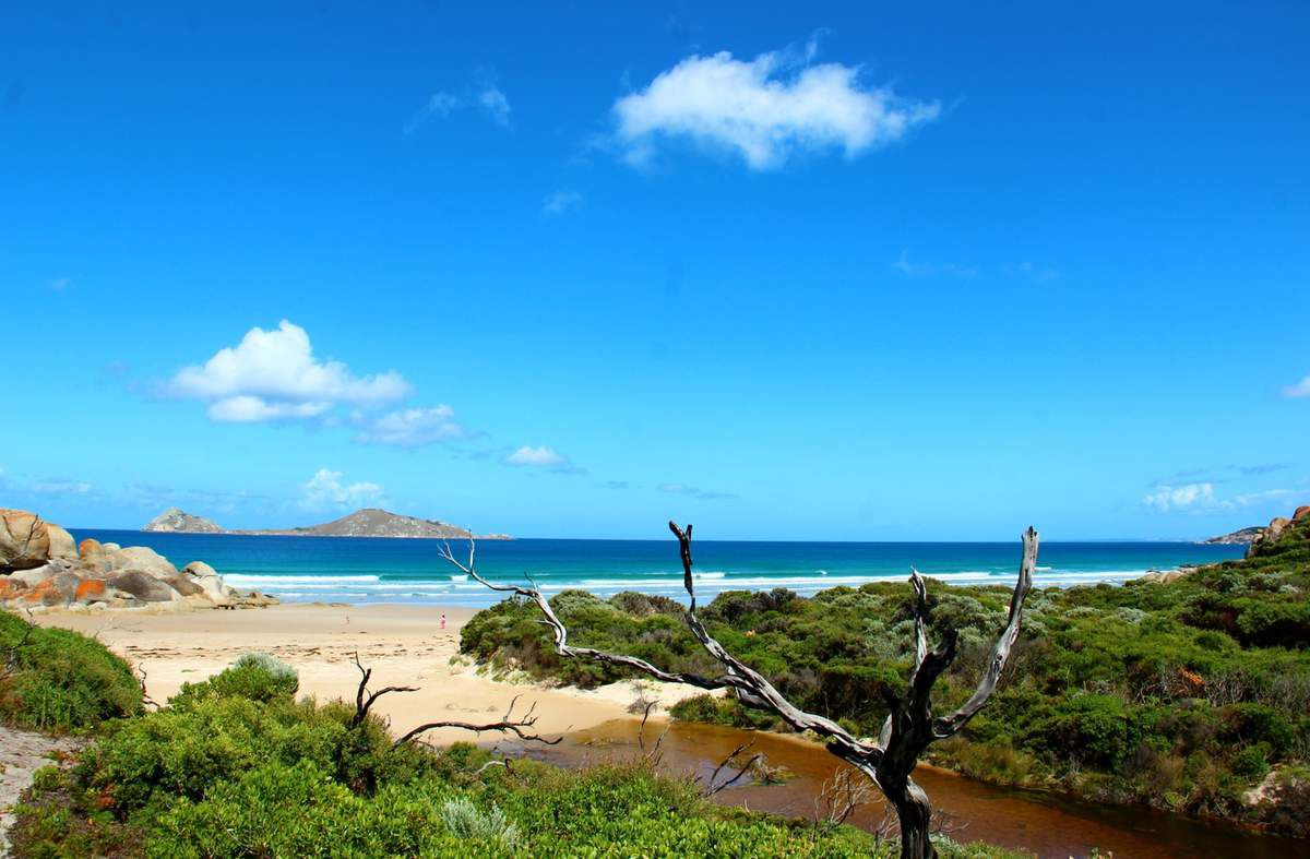 Le Wilson Promotory National Park + Philip Island + Melbourne + La Great Ocean Road + Kangaroo Island + Adélaide en Famille
