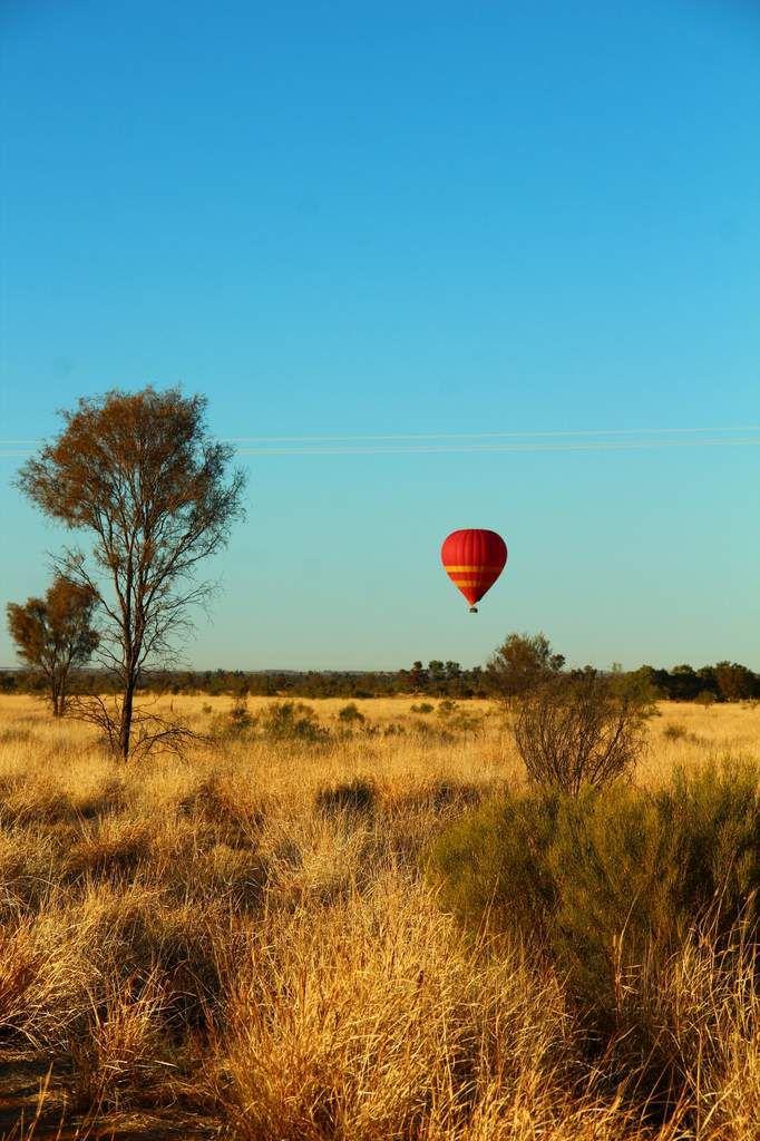Beau panorama en se réveillant dans le bush.