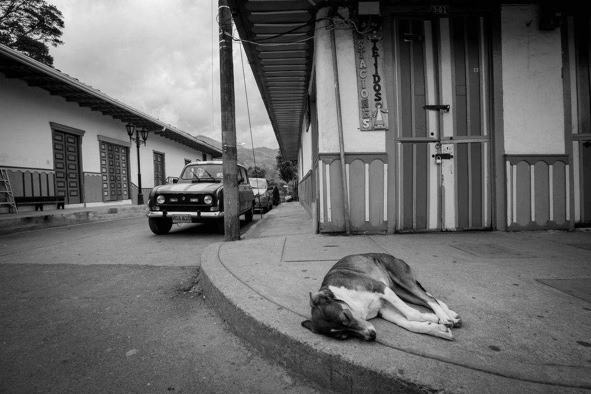 2015: Colombie-Popayan-Silvia-Cali-San Cipriano-Salento-Parc de Los Nevados-Medellin