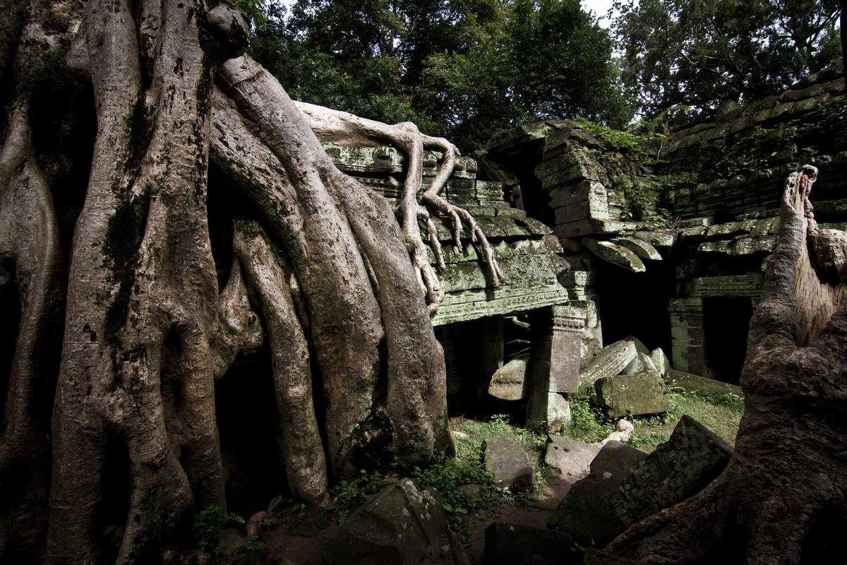 Village flottant de SiemReap...Lac Tonlé Sap....Temple d'Angkor....Ruine de Ta Prohm...Traversée jusqu'à Battambang...Bamboo train...Kampot...île au Lapin Ko Tonsay...Kep et les pêcheurs de crabes...Phnom Penh S21...