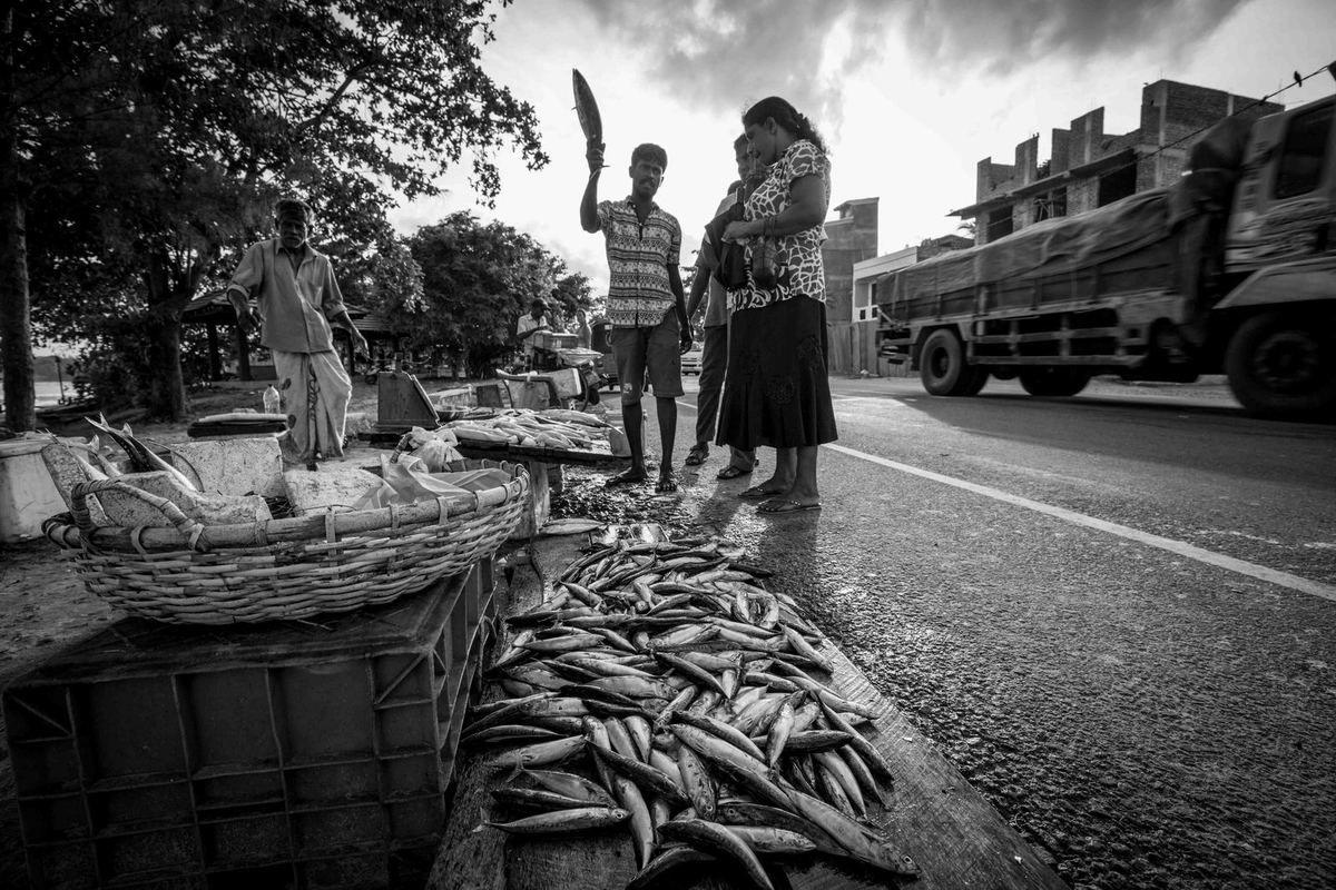 Tangalle-Weligama- Galle-Negombo