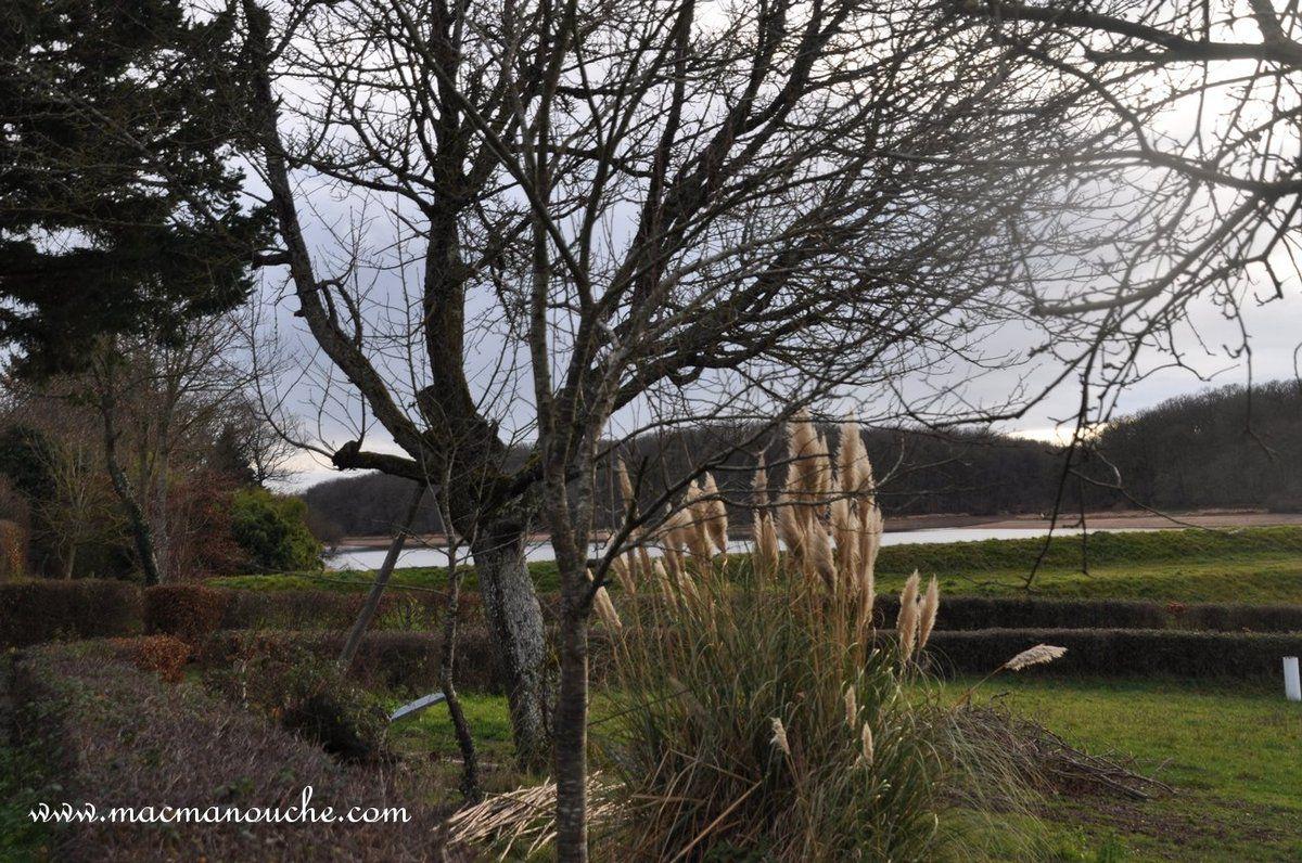 Une dernière photo de l'étang de Pirot avant de regagner Isle-et-Bardais.