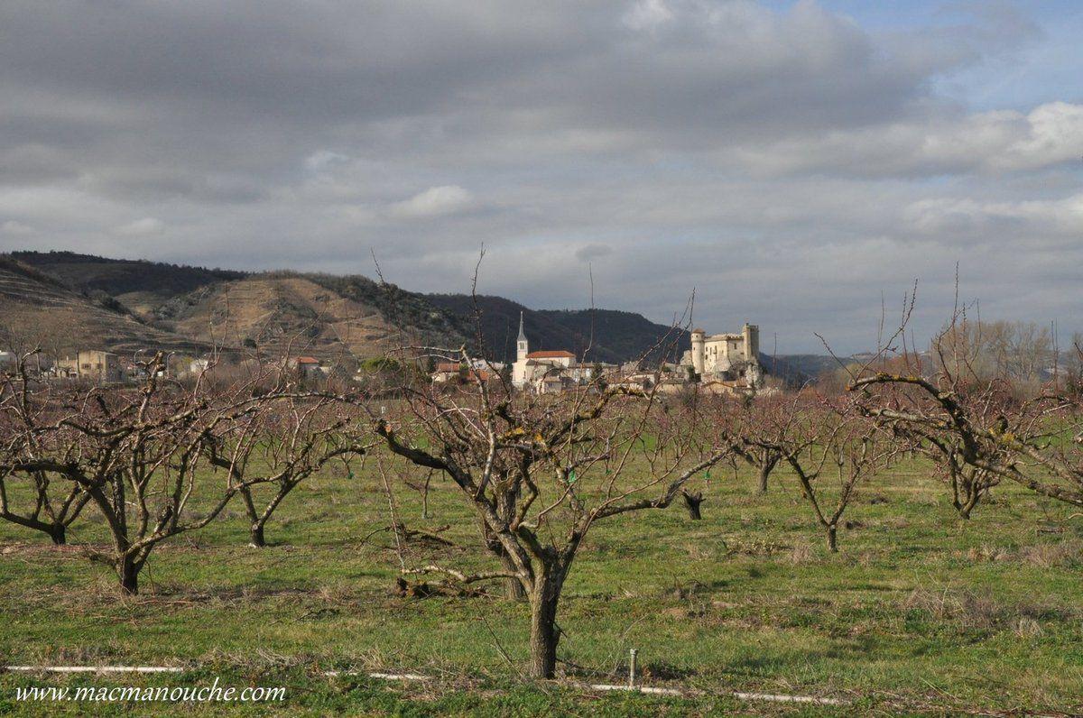 Le verger et au loin le village et son château.