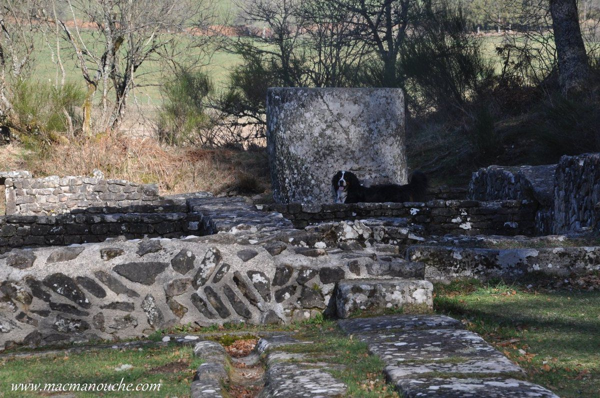 Certains murs sont bâtis en moellons irréguliers,  parfois 'agencés  en ''opus spicatum'' (placés en arête de poisson).