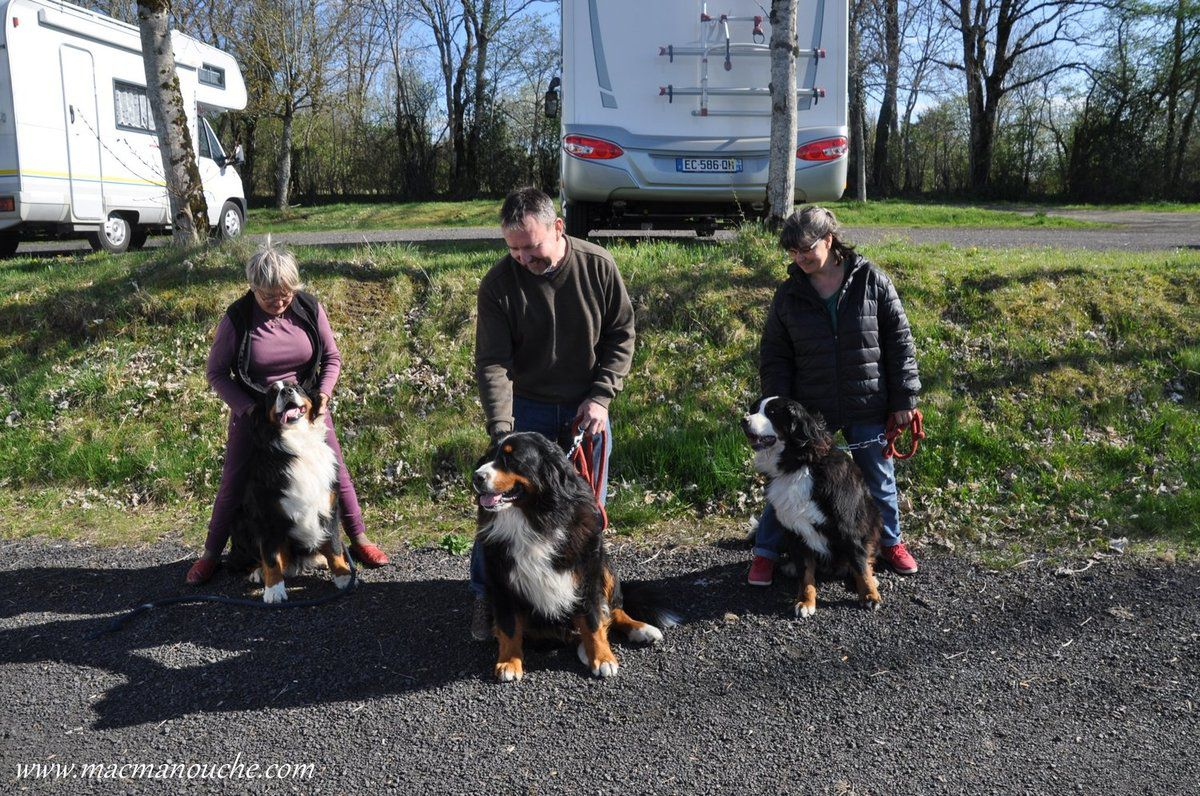 Photo de famille  :(de gauche à droite)  Jaïka, Itak et Ficelle (du même élevage que Jaïka: ''La Grange aux Chênes'' à Saint-Paulien – 43500).