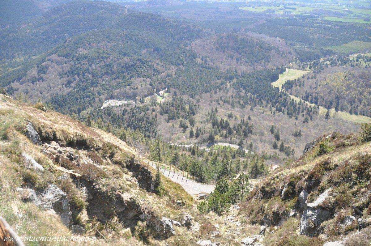 L'arrivée du sentier est tout en bas, la partie déboisée à gauche sur la photo.