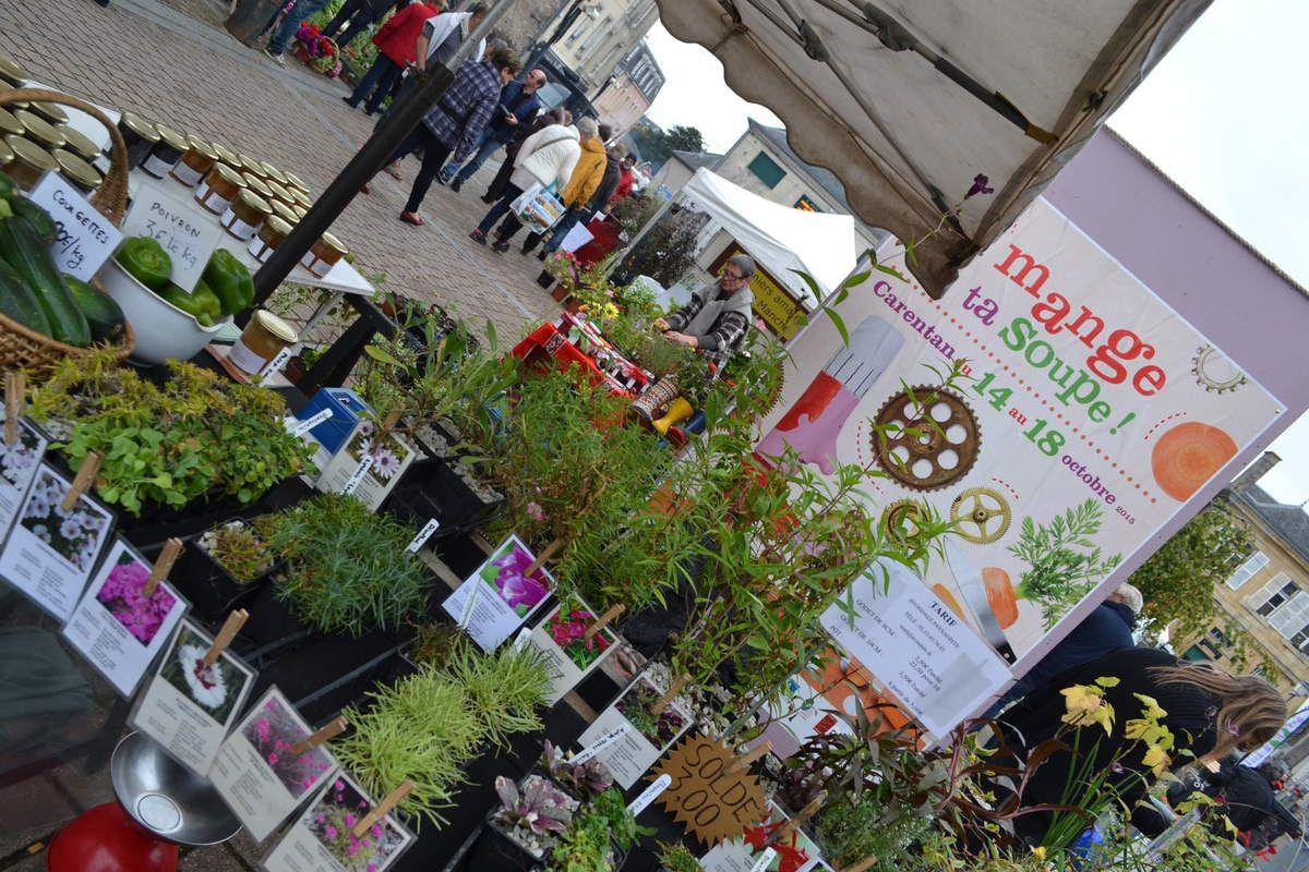 Soup 39 herbes le vide jardins le blog de l 39 association for Vide jardin tremeoc 2015