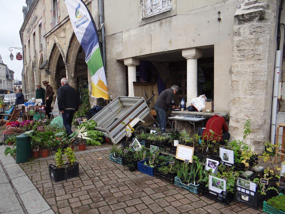 Soup'herbes : Le vide-jardins