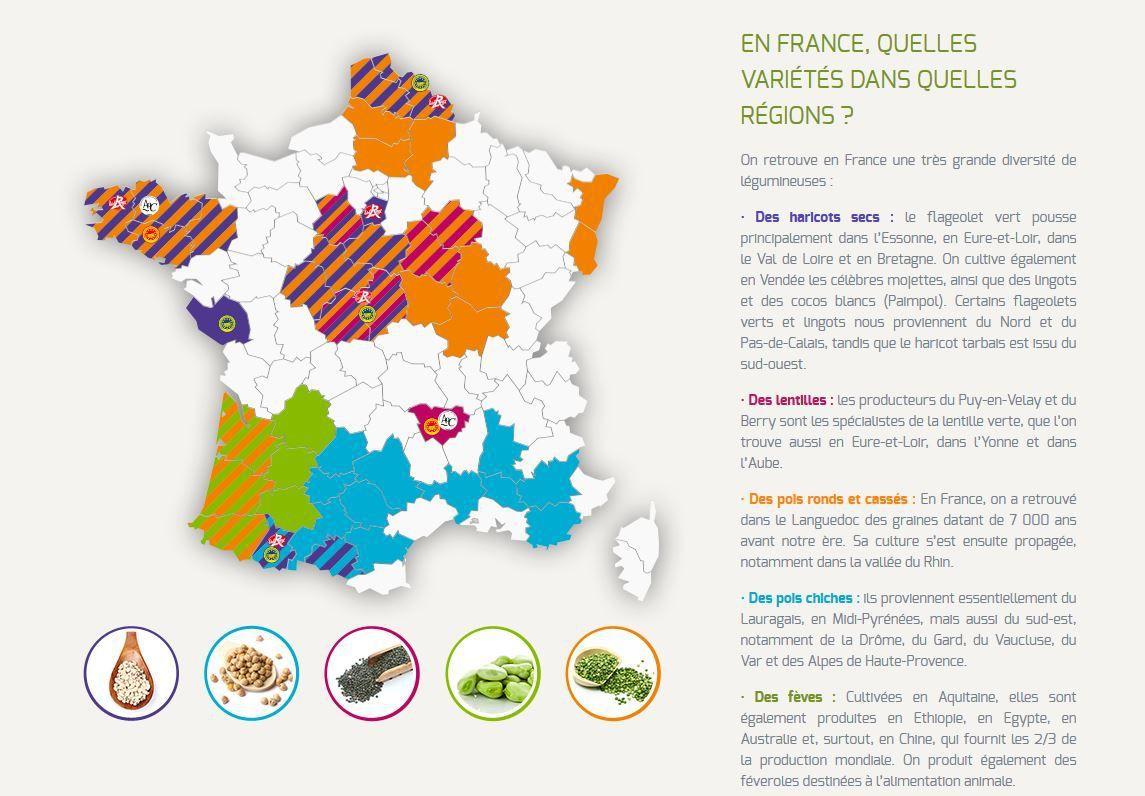 En France, la culture de légumineuses ne couvre plus que 200 000 hectares aujourd'hui, contre 800 000 au début des années 90