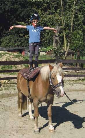 J'peux pas, j'ai poney