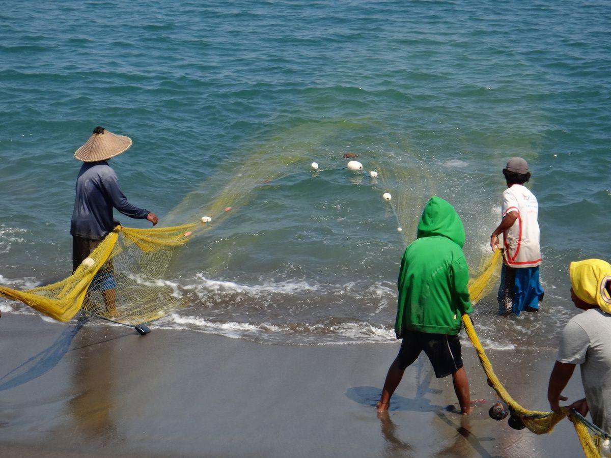 Les bateaux de pêches sont des sortes de pirogues. Ils partent seuls à la mer.On voit Marc sur la 2ème photo. Maillot de bain bleu. La pêche n'est pas toujours miraculeuse. Ceux qui aident se payent en poissons. On a laissé notre part!