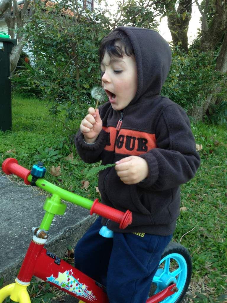 la vie est belle quand on a trois ans...