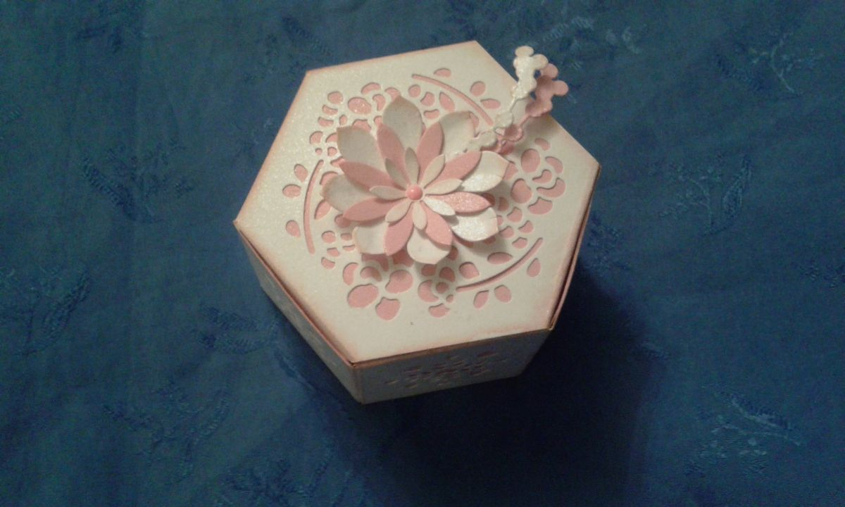 STAMPIN'UP BOX THINLITS ET SUCCULENT
