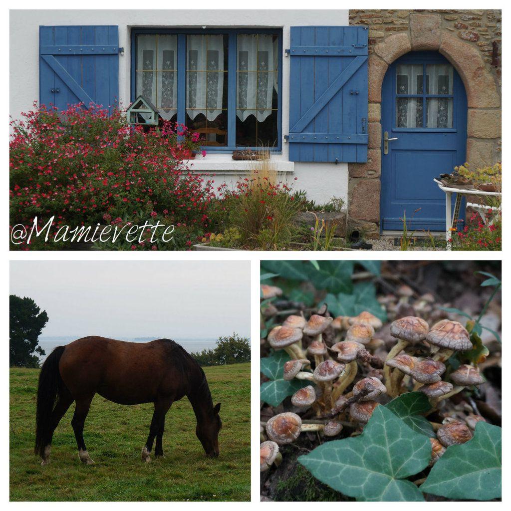La rando du Morbihan...