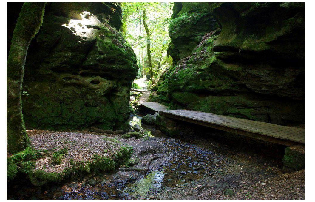 Luxembourg - Randonnée pédestre à Berdorf