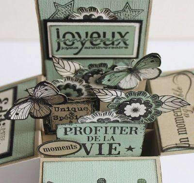 Carte boîte et son tuto sur le blog Variations Créatives...