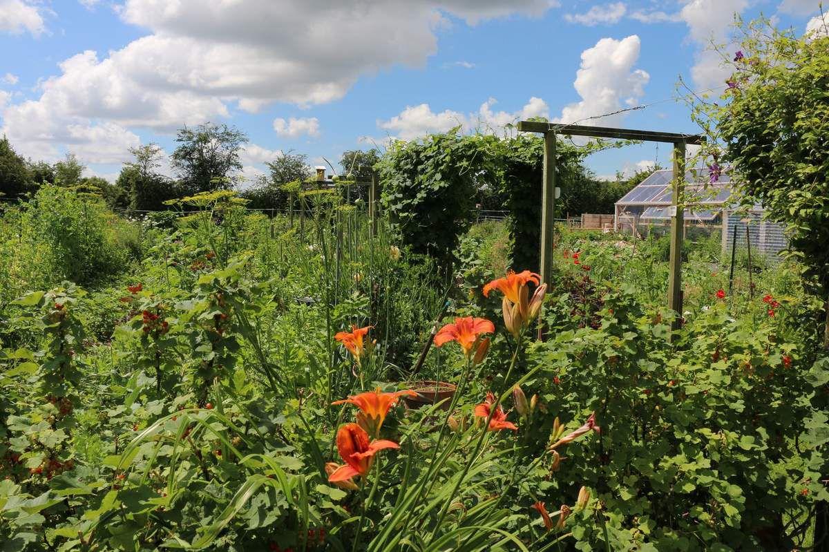 Visite du &quot&#x3B;256&quot&#x3B;, le jardin de Florence et Yvan