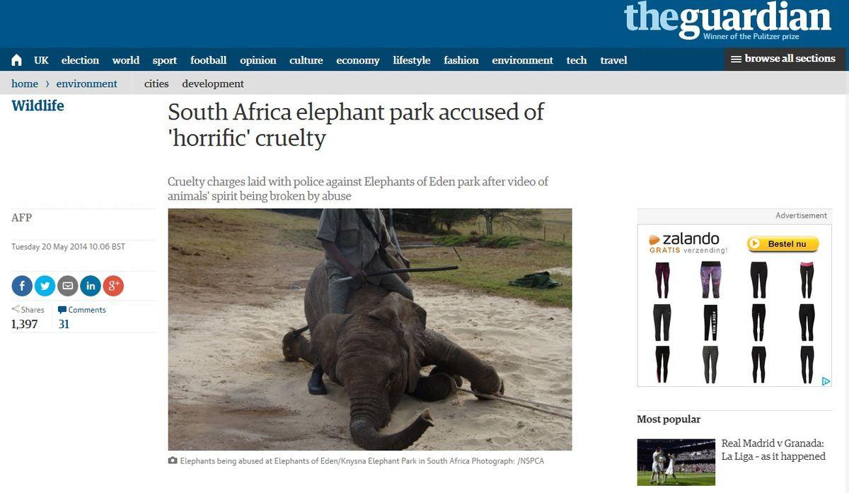 Afrique du Sud 2014: Volontariat avec les éléphants