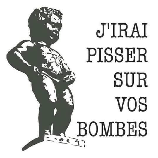 Ma Belgique...