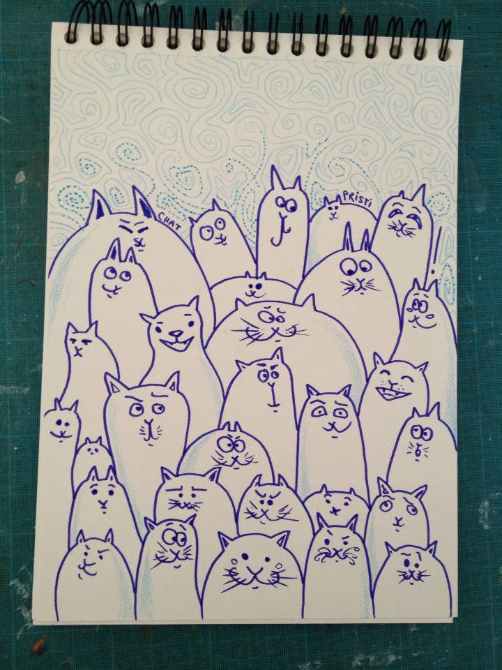 #chapristi #chats #illustration #expressions #caractères #lisacréa