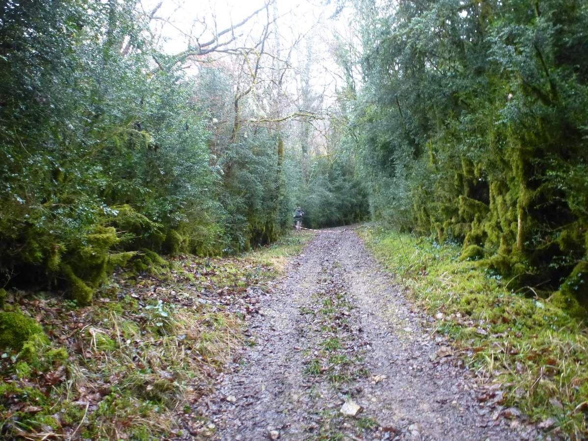 Trail de l'Aqueduc à Cours