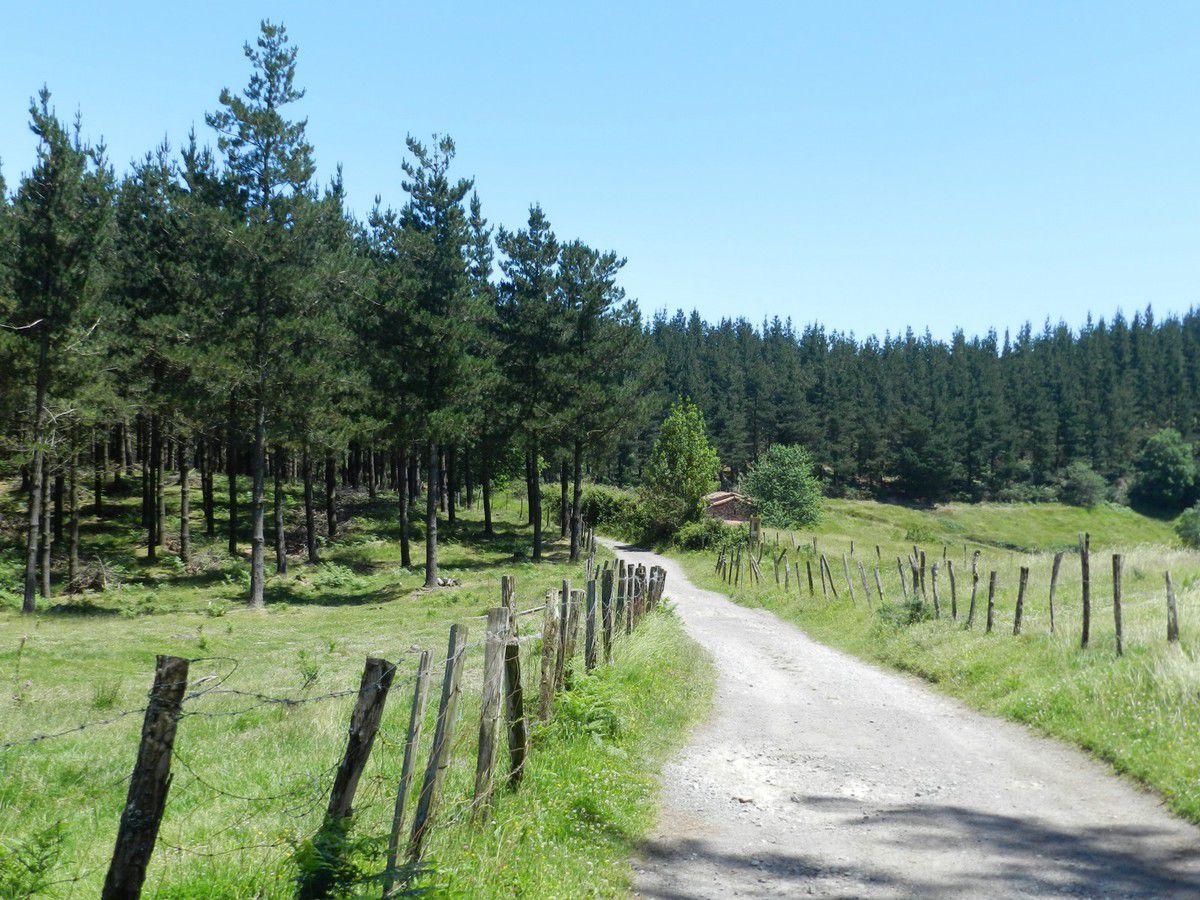 Camino del Norte - 4 - de  Deba à Markina Xemien
