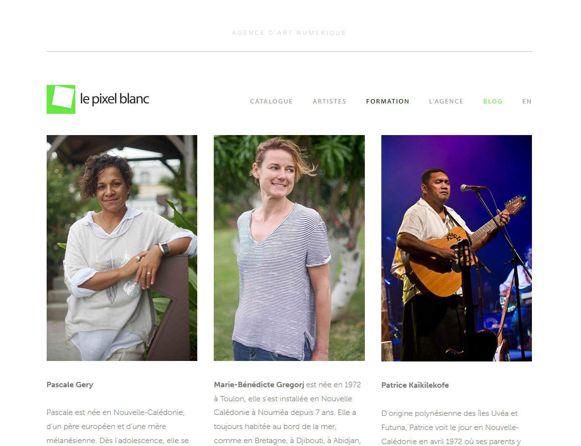 Art numérique en Nouvelle-Calédonie : formation &amp&#x3B; perspective