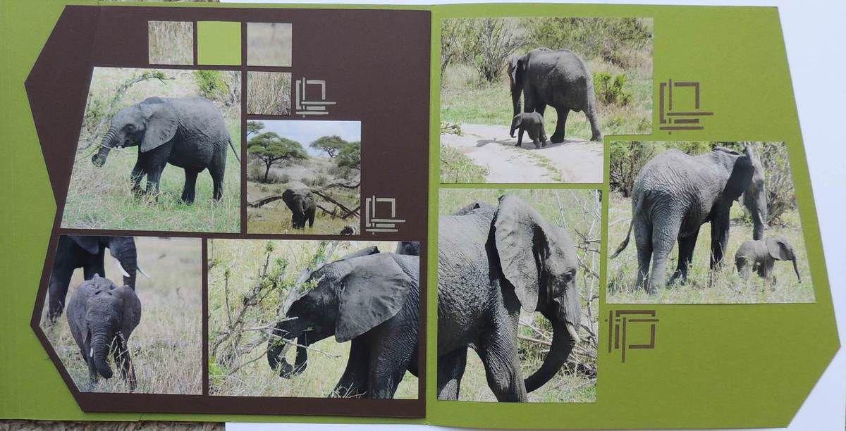 Bonjour tout le monde,   Me voici de retour avec une page multiple, ce sont 2 doubles pages découpées à l'aide du gabarit bordures d'Easy scrap.  Après les éléphants de mon Amie Be Creativa ... voici les miens ... nous avons toutes craqué devant ce petit éléphant avec sa maman, c'était trop mignon !  ... Je vous souhaite une belle journée... Merci pour vos commentaires si sympathiques ...A très bientôt!   PS : Désolée de tout écrire à la queleuleu mais je ne parviens plus à aller à la ligne avec Overblog !