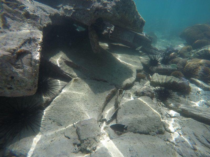 Vues sous l'eau sur l'île de Koh Lam